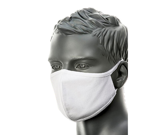 Face Mask - Stuart Canvas